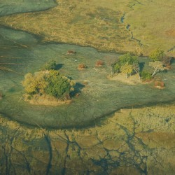 When to go to Okavango Delta