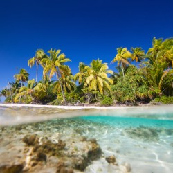 When to go to Tahiti
