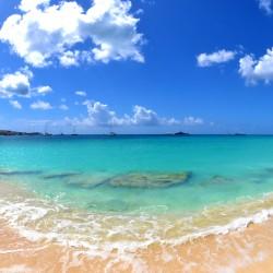 When to go to St. Maarten