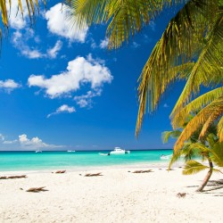 When to go to the Bahamas