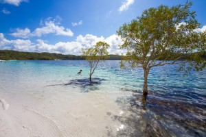 Best Time to go to Fraser Island